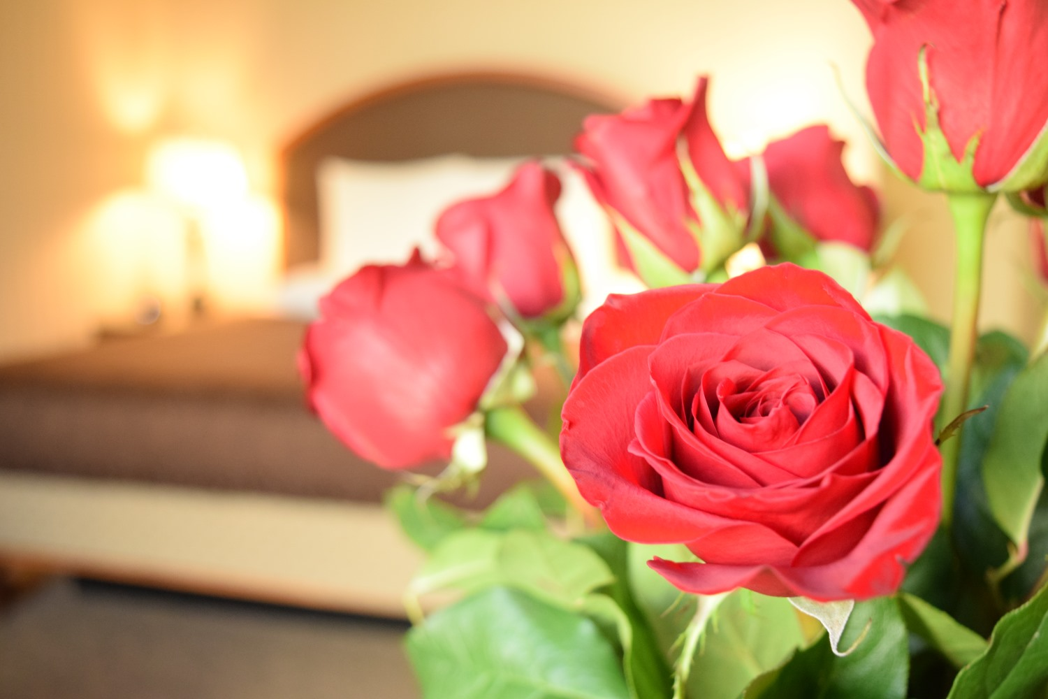 Valentine's In Greensboro, Roses in guestroom